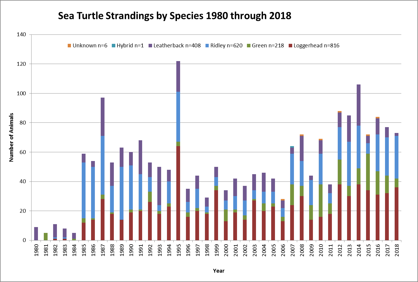 Sea-Turtle-Strandings-by-Species-through-2018